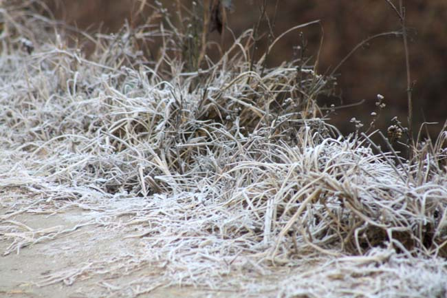 05 frosty morning in Nepal during November December