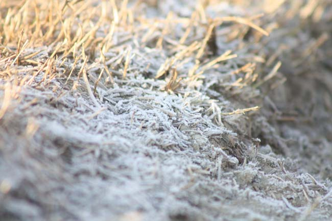 06  frosty morning in Nepal during November December