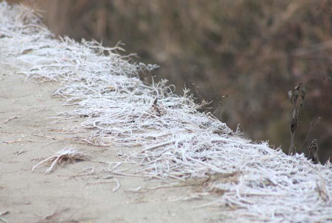 07  frosty morning in Nepal during November December