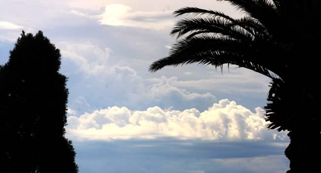 01 open sky in Australia photo captured in Auburn Park