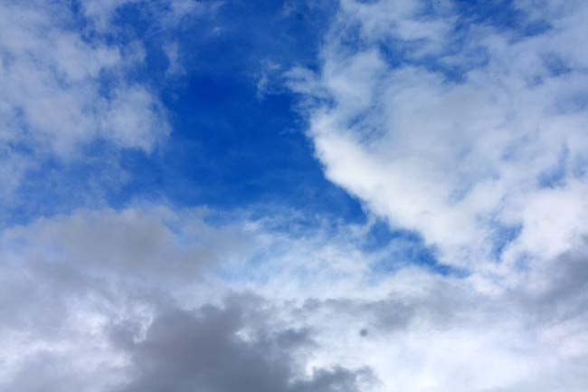 02 open sky in Australia photo captured in Auburn Park