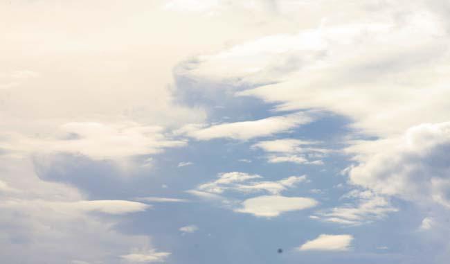 03 open sky in Australia photo captured in Auburn Park