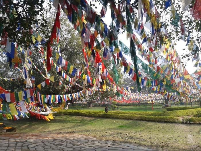 02 Prayer Flag in Lumbini, birthplace of Lord Buddha