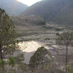 Cultivated land  in Arghakhachi Nepal